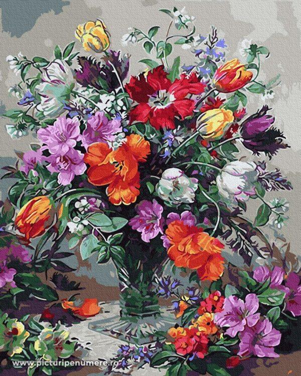 Picturi pe Numere RX30119