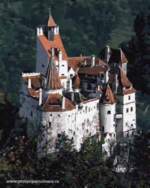 Castelul Bran Brașov GX32254