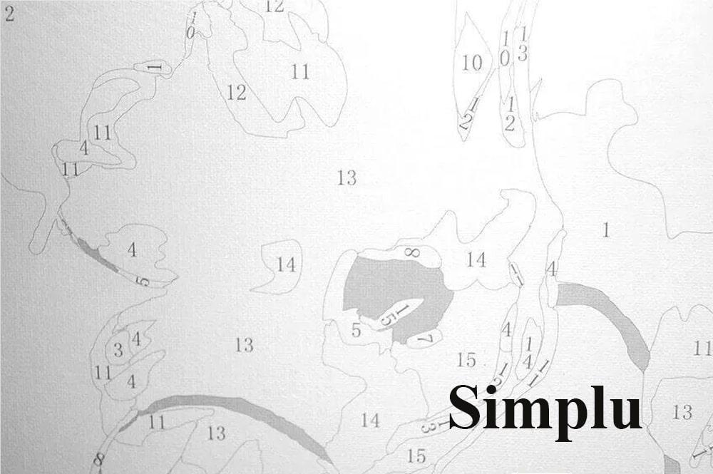 Picturi pe numere - Nivel simplu