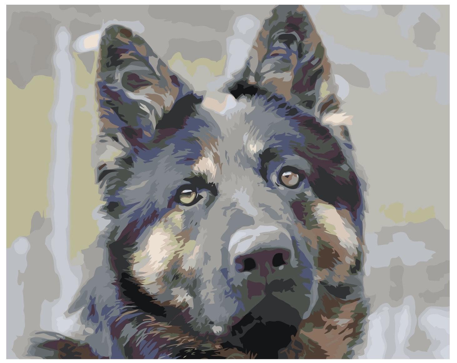picturi pe numere personalizate cu animale