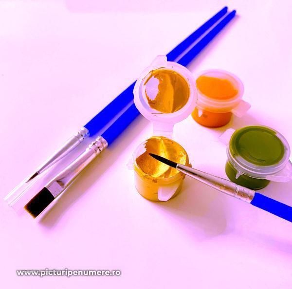 Set 3 pensule pentru pictură